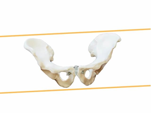 産後の骨盤の歪みの原因&セルフチェック方法